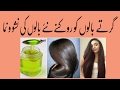 Desi Totkay Hair Loss, Fall Prevention  UrduTips Balon Ka Girna    in urdu