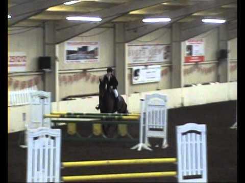 Jenny Kelly BSJA - Sponsored by The Horse Bit Trad...
