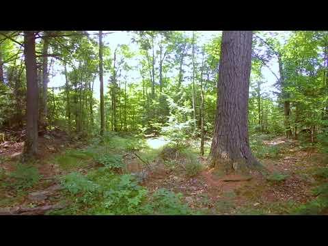 VR Documentary (Final)