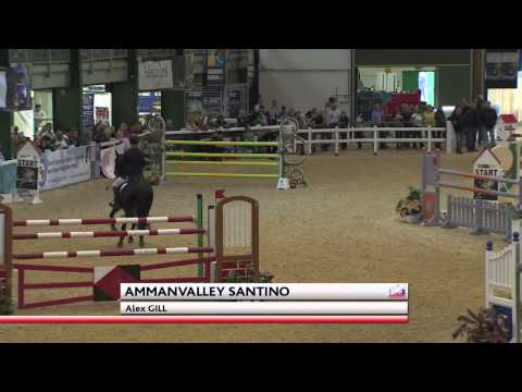 Showjumping -  Alex Gill -SCOPE 2014