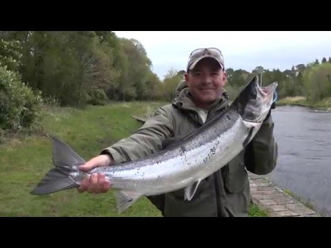 Drowes Salmon Fishery - Spring Salmon Fishing In Ireland