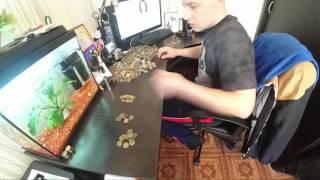 Сколько монет в 5 литрах