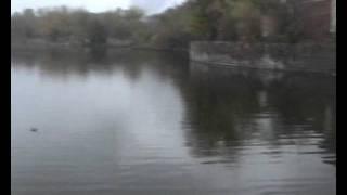 Проблемы экологии(Небольшое видео об экологии моего города. К сожалению качество видео немного страдает. Опыта монтирования..., 2011-12-11T20:05:03.000Z)