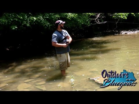 Short - Shallow Water Fishing On The Salt River In Kentucky