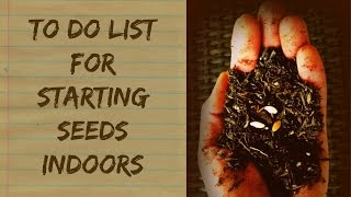 What Do I Need To Start Seeds Indoors - Organic Gardening For Beginners