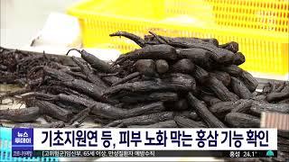 기초지원연, 홍삼 성분…