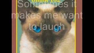 Blink 182 - M+M