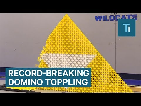 19 domino artists created this display of 250,000 dominoes