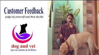 Dog Owners Feedback about dog and vet service