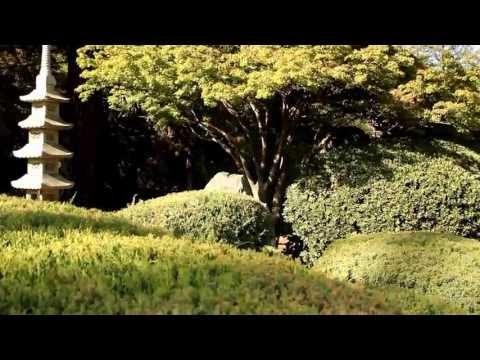 Japanese Friendship Garden, San Jose, California