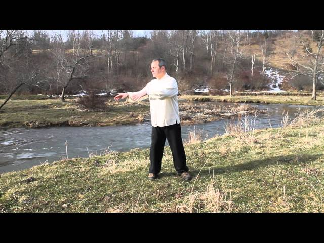 Tai chi flow and fluidity