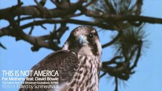 Pat Metheny Group feat. David Bowie This Is Not America