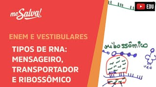Me Salva! GEN05 - Tipos de RNA: mensageiro, transportador e ribossômico