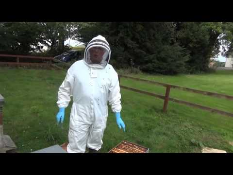 4  How To Prevent Honeybees From Swarming