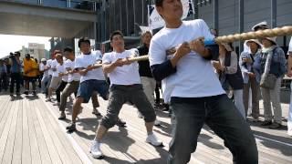2014 黒船祭 綱引大会予告