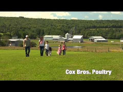 Maritime Pride Cox Bros Poultry Farm