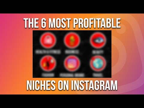 the-6-most-profitable-niches-on-instagram-|-@chrisriedonline