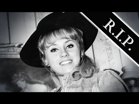 Melody Patterson ● A Simple Tribute