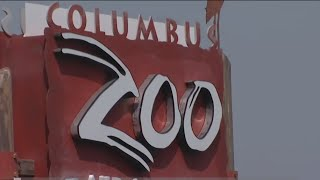 Report: Columbus Zoo officials used sports suites, properties for personal use; awarded no-bid const