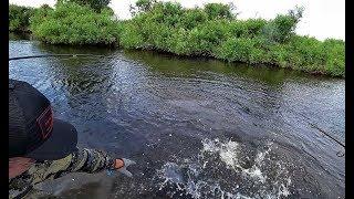 О ТАКОЙ РЫБАЛКЕ МЫ МЕЧТАЛИ Жор щуки на джиг ранним утром Рыбалка на спиннинг
