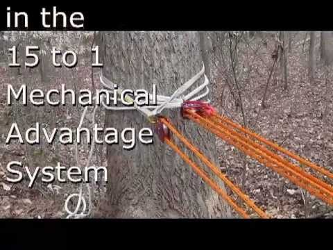 Rigging a 15 to 1 Mechanical Advantage System with Raymond Eaton arborist wannabe