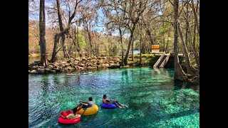 Top 11 Springs in Central Florida