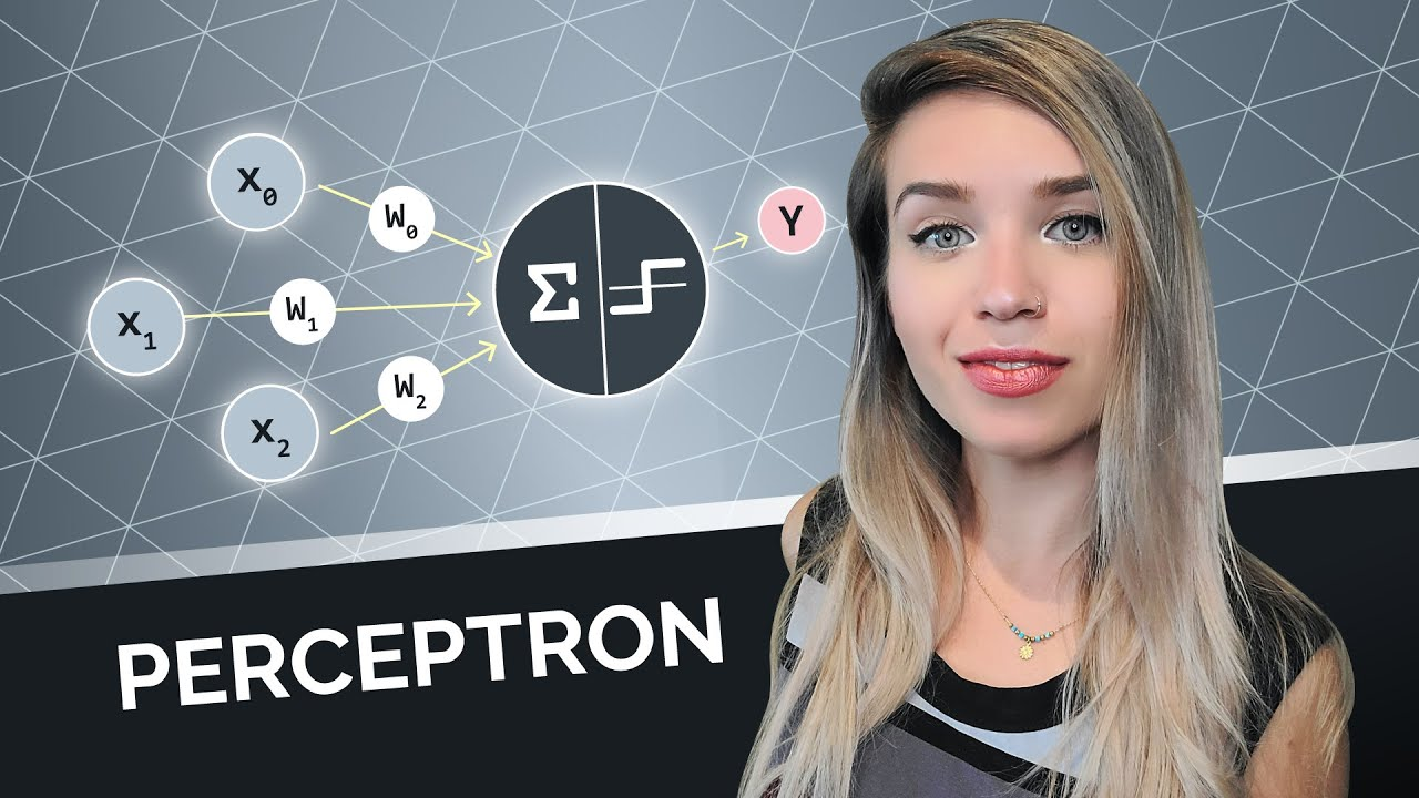 Machine Learning FOR BEGINNERS - Perceptron with Code Example