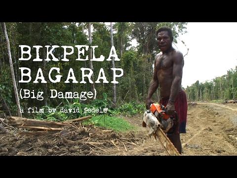 BIKPELA BAGARAP (Big Damage) - Illegal Logging in Papua New Guinea
