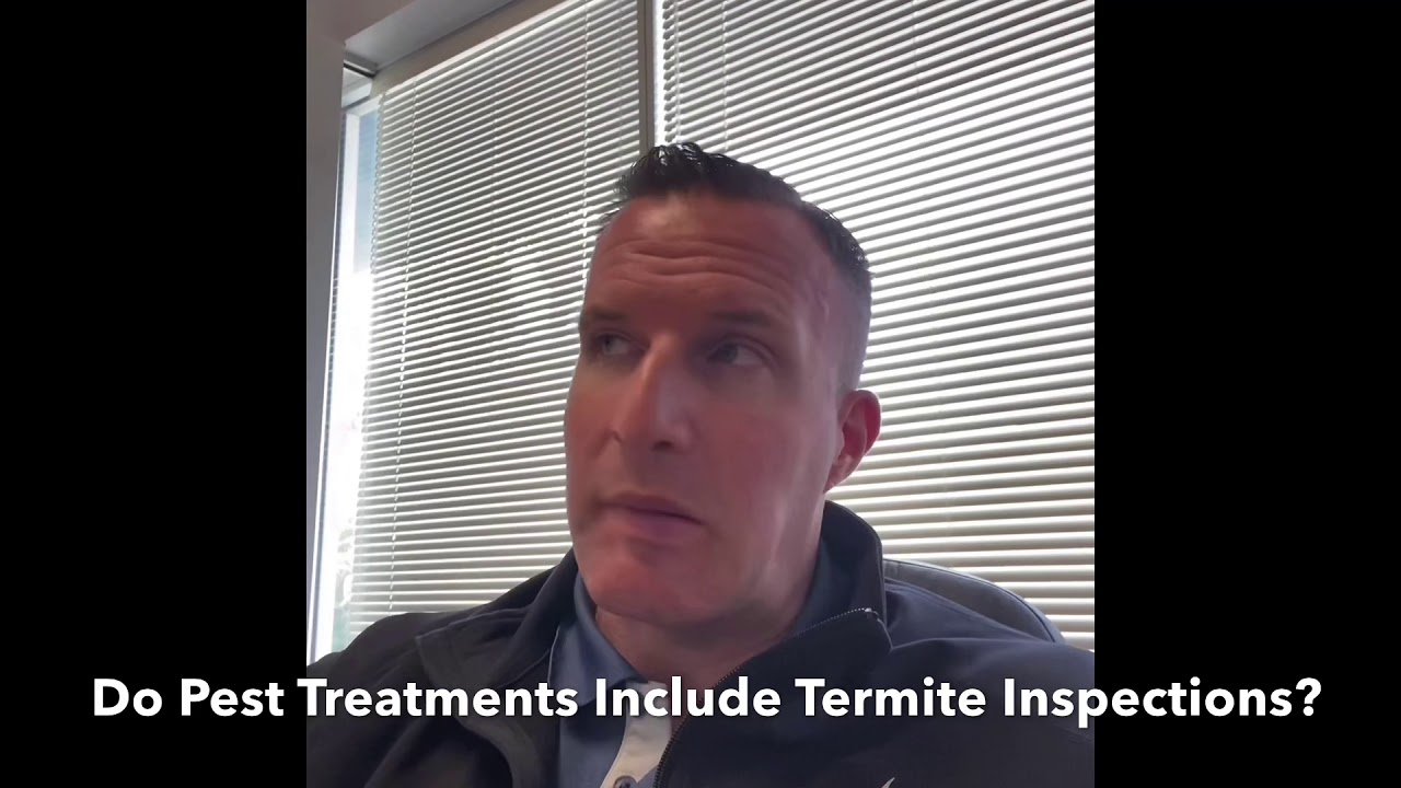 Sarasota Mobile Home Termite Inspections