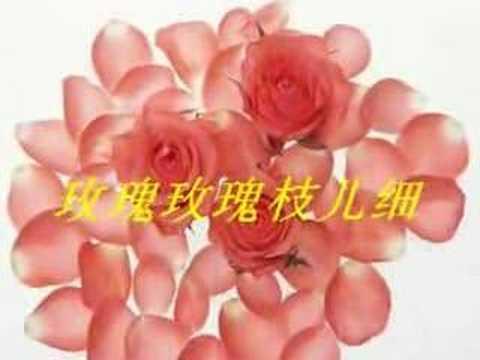 玫瑰玫瑰我爱你 - Rose Rose I Love You - 歌手:姚莉