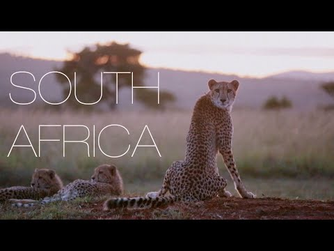 South Africa with primeguides.net-90 second travel guide