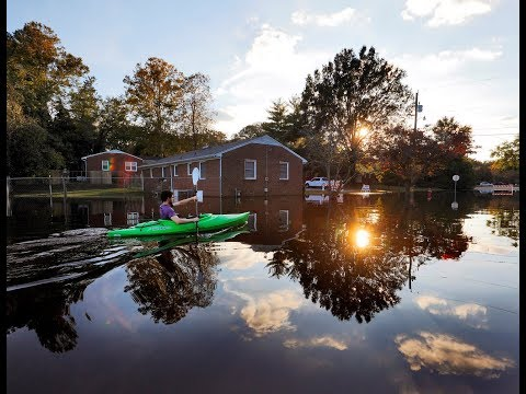 As rising sea levels threaten cities, how will they adjust?