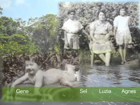 Guyana, Pomeroon River Life