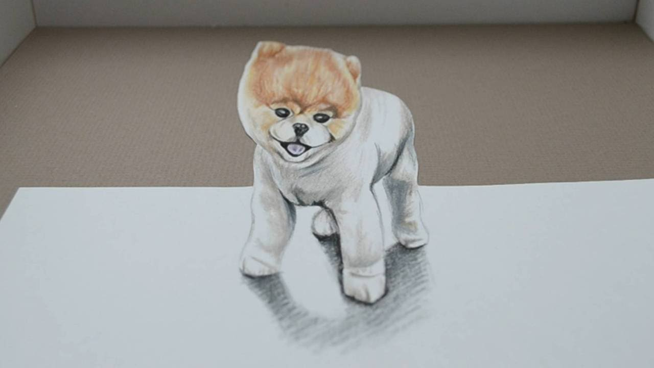 Drawing Boo The Dog 3d Trick Art Youtube