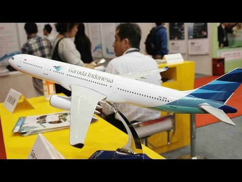 Indonesian airlines eye Chinese tourism market
