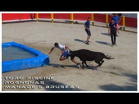 Toro Piscine Rognonas 11-07-2016