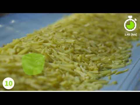 Farm Frites Production Process