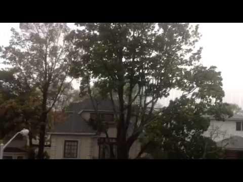 Hurricane Sandy Midwood Brooklyn