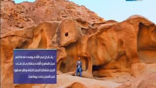 قصر الكلام أمام مقام النبي هارون .. تعرف على قصة العجل الذي تشكل على الجبل