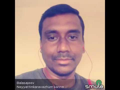 Neyyattinkara vazhum kanna Balu