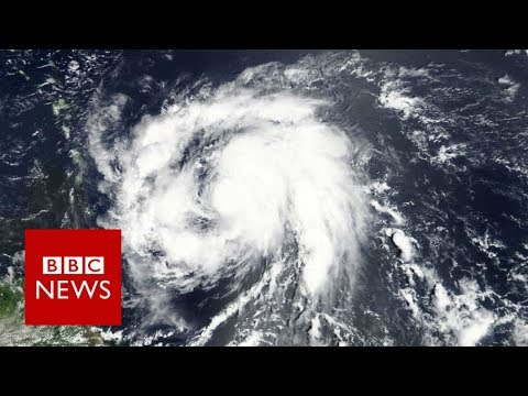 Hurricane Maria 'devastates' Dominica: PM - BBC News