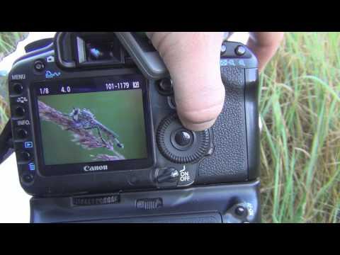 Macro Photography Tutorial episode 1