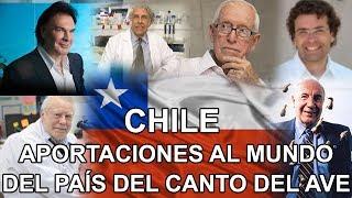 Chile - Aportaciones al mundo del país del canto del ave