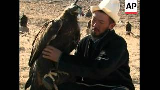 Ancient art of hunting with birds of prey