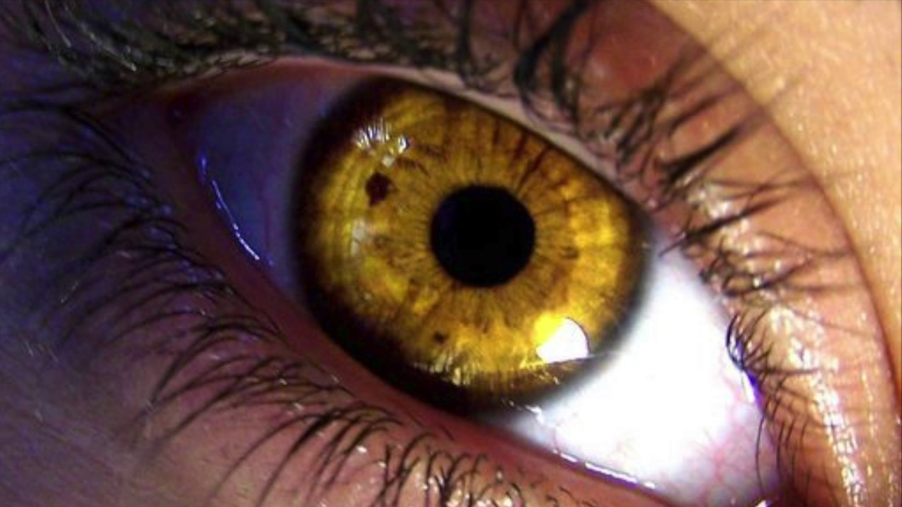 Get Yellow Gold Eyes In 10 Seconds How To Change Your Eye Color