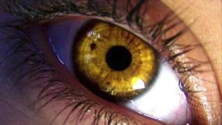 Get YELLOW / GOLD Eyes in 10 SECONDS - How To Change Your Eye Color Hypnosis / Biokinesis