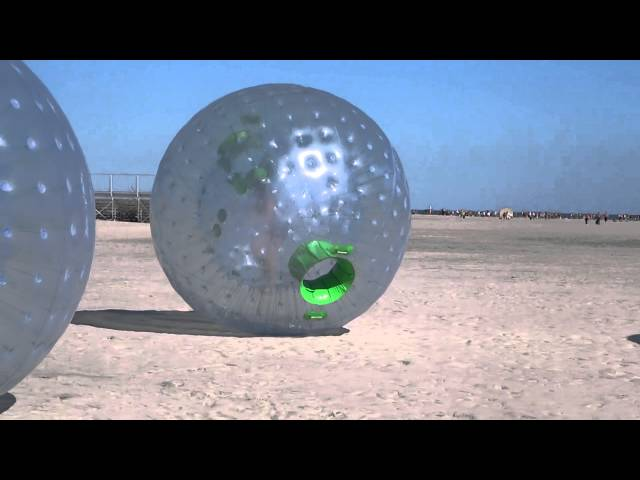 Wildwood Zork Bubble Thing