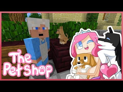 THE PET SHOP! Ep3 The Old Lady and Tink!  Minecraft ROLEPLAY