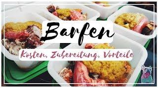 BARFEN FÜR ANFÄNGER- KOSTEN, ZUBEREITUNG, VORTEILE | frenchbulldog.bruno