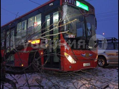 Водитель автобуса врезался в дерево на проспекте в Хабаровске. Mestoprotv